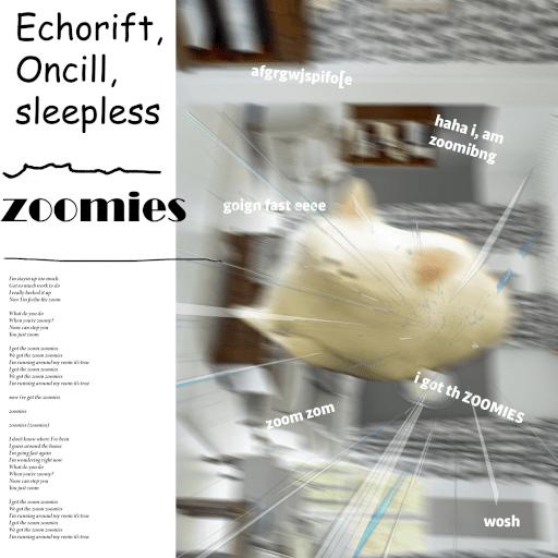 ZOOMIES album cover